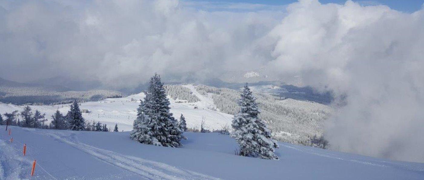 skiurlaub-verein-bayern-skifahren-skiausflug-panorama-1400